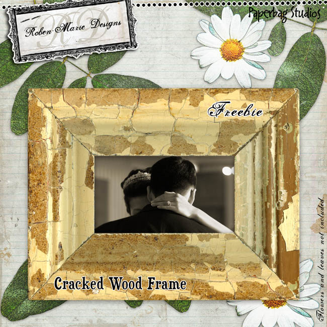 Rsmith_crackedwood_frame_freebie_preview