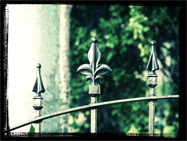 Rsmith_iron_fence_3_blog
